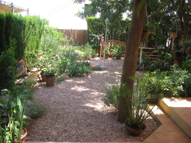 Mis dos pequeños jardines Plantas009-1
