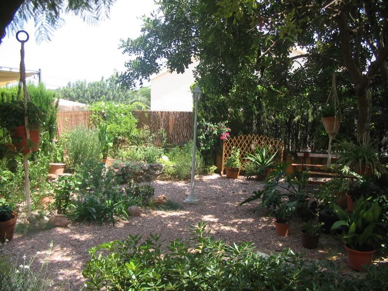 Mis dos pequeños jardines Plantas010-1