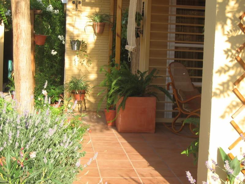 Mis dos pequeños jardines Plantas075