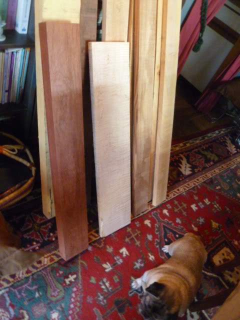 Kid in a candy shop - new haul of wood Hardwood0222