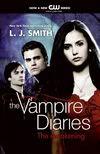 Qual a capa ideal para o primeiro livro? USA2009