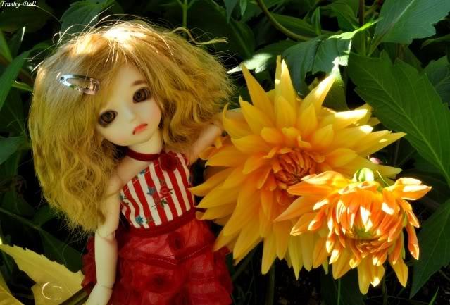 Célia and flowers [Ange Ai Uri Custom House]Bas p.n°2 Clia11
