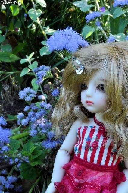 Célia and flowers [Ange Ai Uri Custom House]Bas p.n°2 Clia13