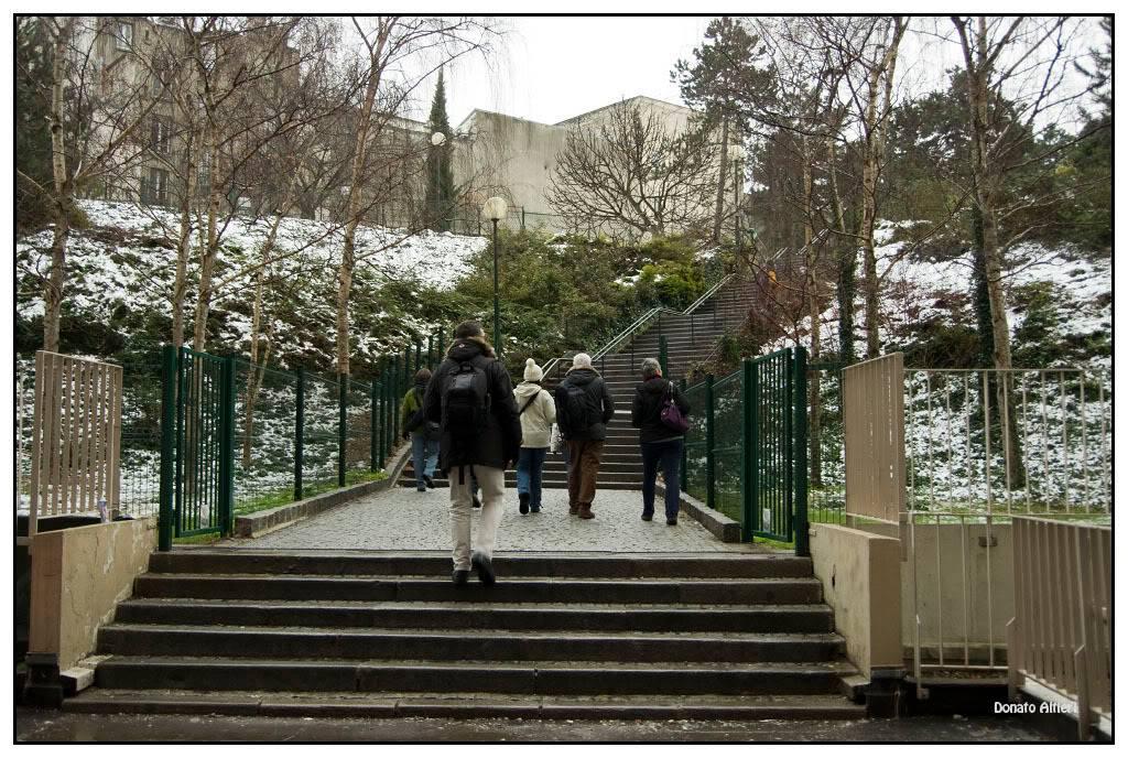 sortie Paris / La Butte aux cailles du 28 décembre 2010 IMG01943