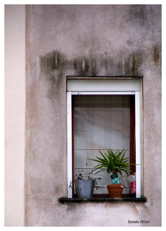 sortie Paris / La Butte aux cailles du 28 décembre 2010 - Page 5 IMG01948