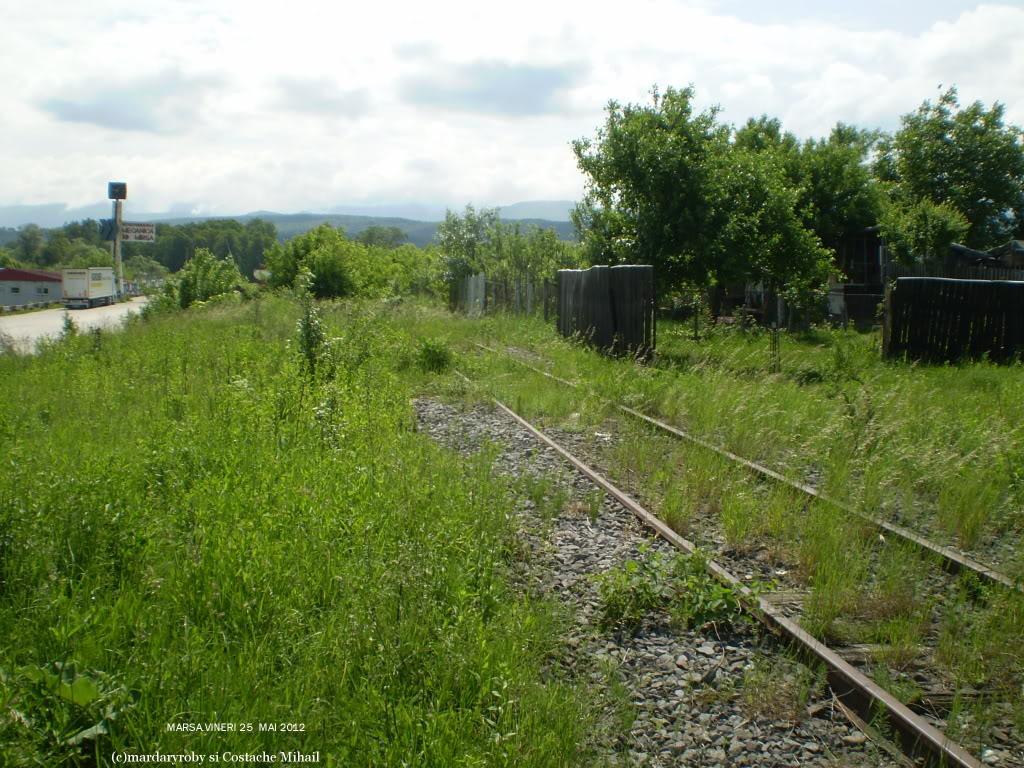 Linii industriale - Pagina 6 P1010285