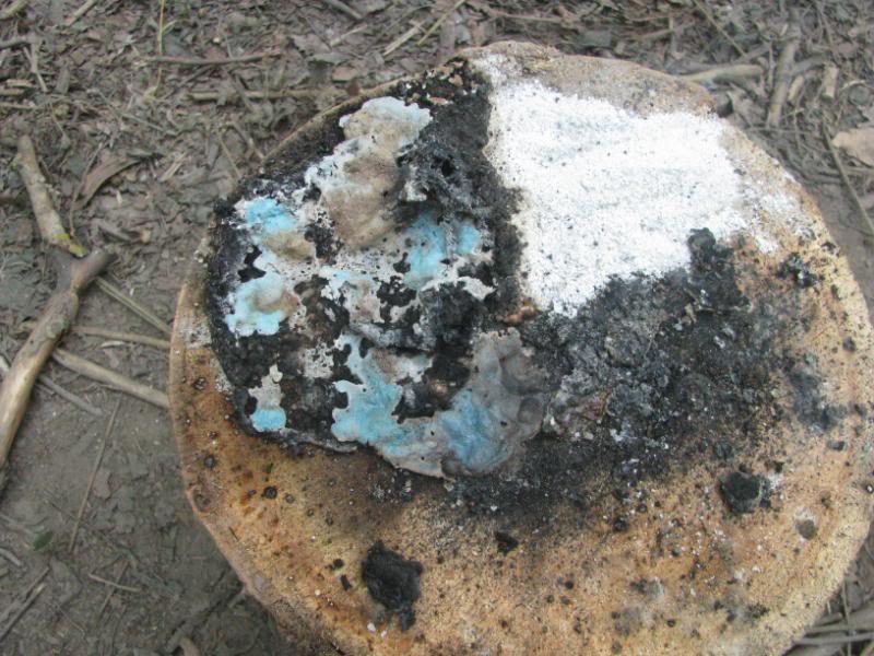 DRAVANTURA 2012- Luksa IMG_1135