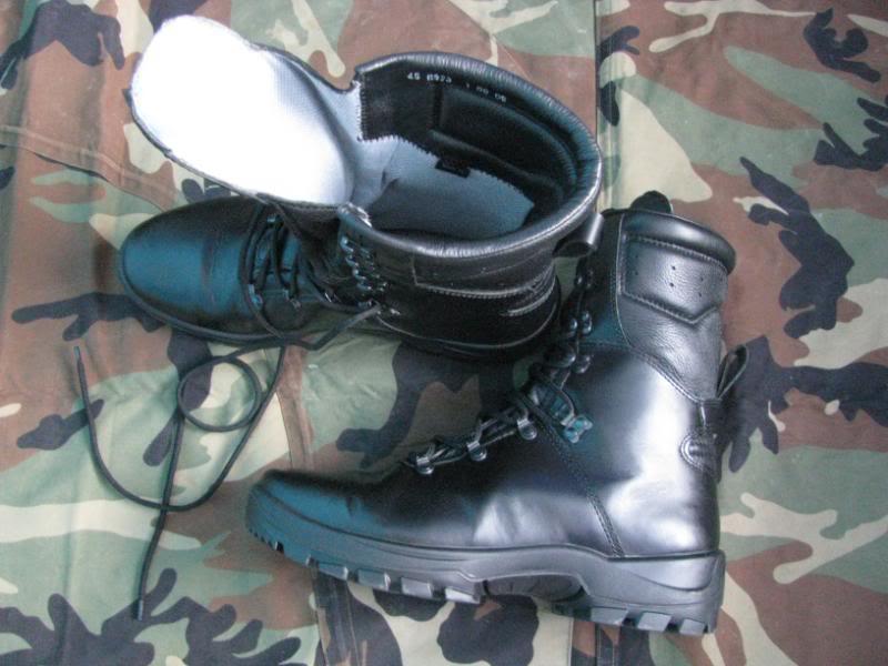 cipele /čizme - Page 6 IMG_8627