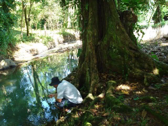 Pequeño rio de siquirres, Costa Rica 1
