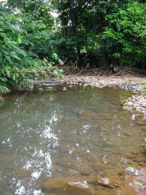 Pequeño rio de siquirres, Costa Rica Rio1