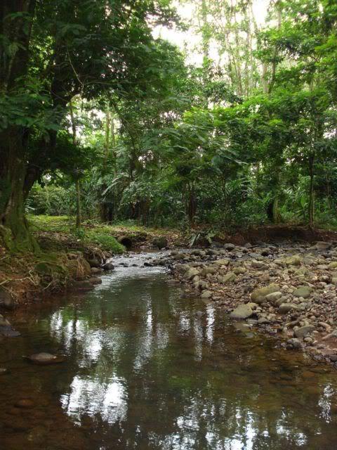 Pequeño rio de siquirres, Costa Rica Rio2