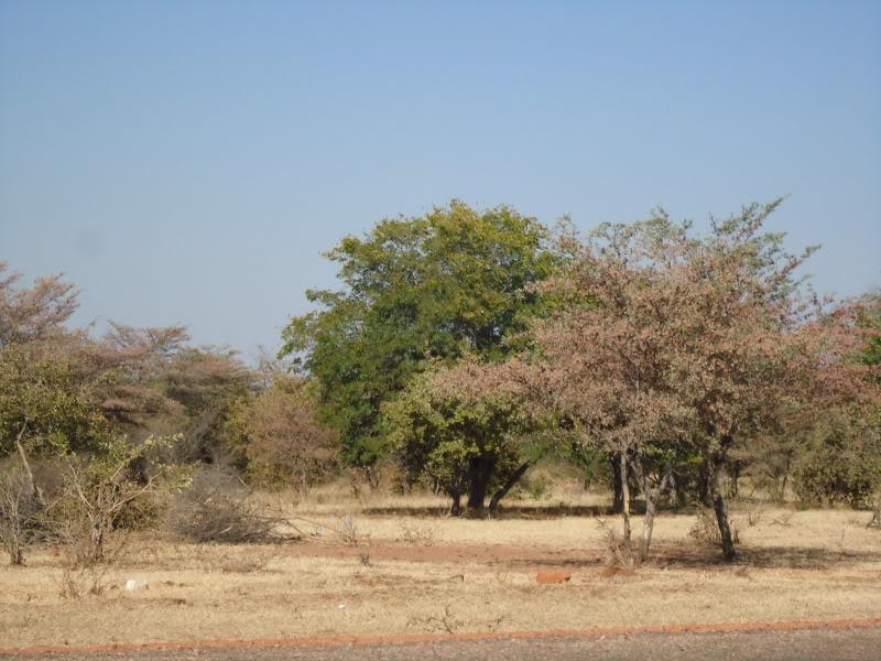 Angola   1143