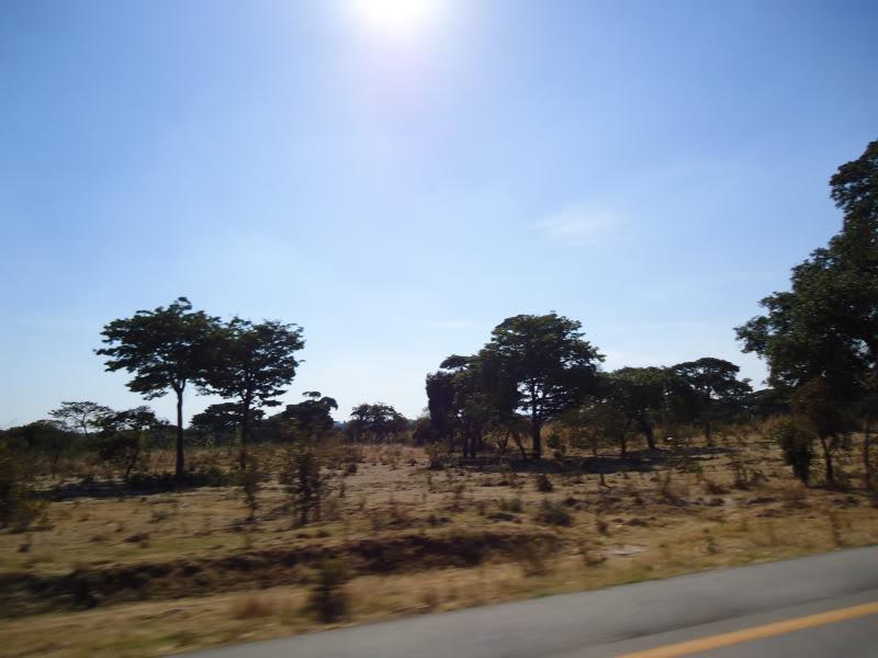 Angola   1175