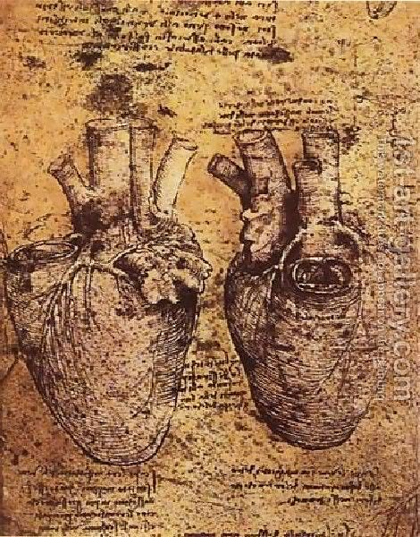 Leonardo da Vinči Heart-And
