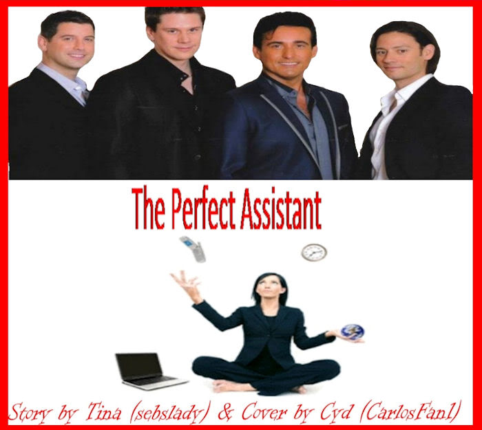 The Perfect Assistant TinaCover2a
