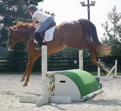 Aslan sees the horses moved in Secret2