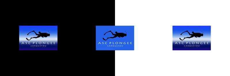 Un nouveau logo pour l'ASC Plongée :  LE GRAND VOTE Bandeauequilibre