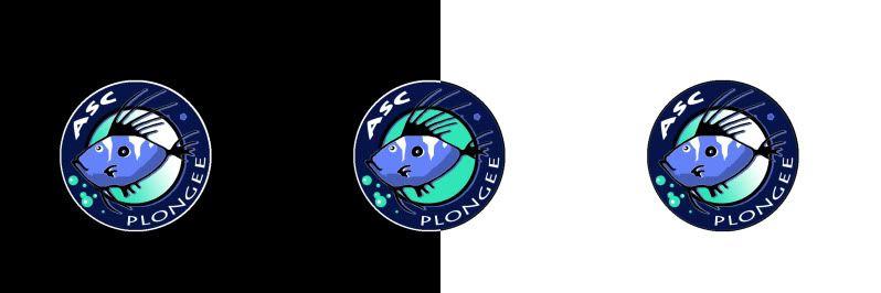 Un nouveau logo pour l'ASC Plongée :  LE GRAND VOTE Bandeausaintpierre