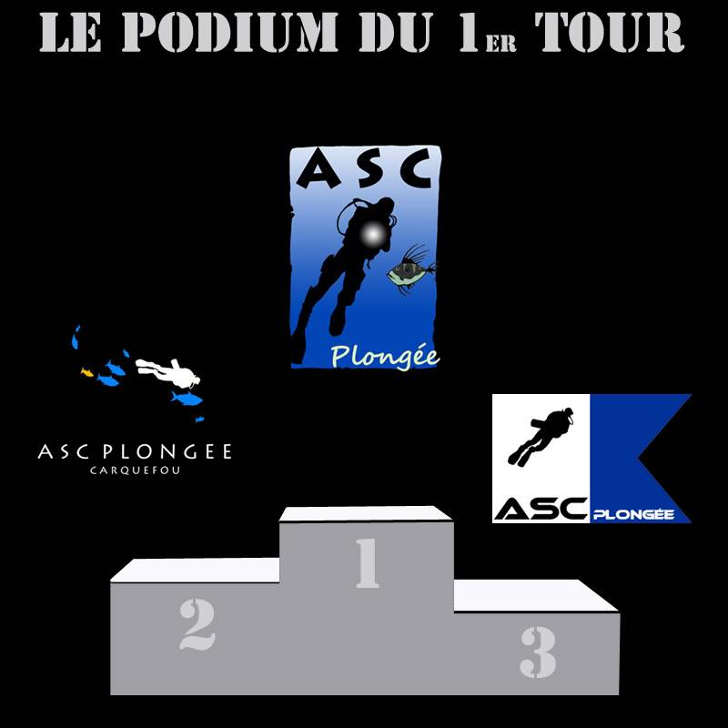 Un nouveau logo pour l'ASC Plongée :  LE GRAND VOTE - Page 2 Podium_1ertourcopy