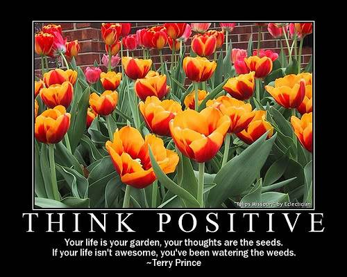 People, Pastors & Leaders You Can Trust Think-positive