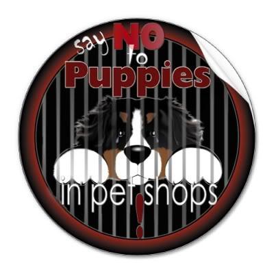 Πωλούνται ψυχές σε τιμή ευκαιρίας... Διαβάστε ΠΡΙΝ αγοράσετε Say_no_to_pet_shop_puppies_stickers