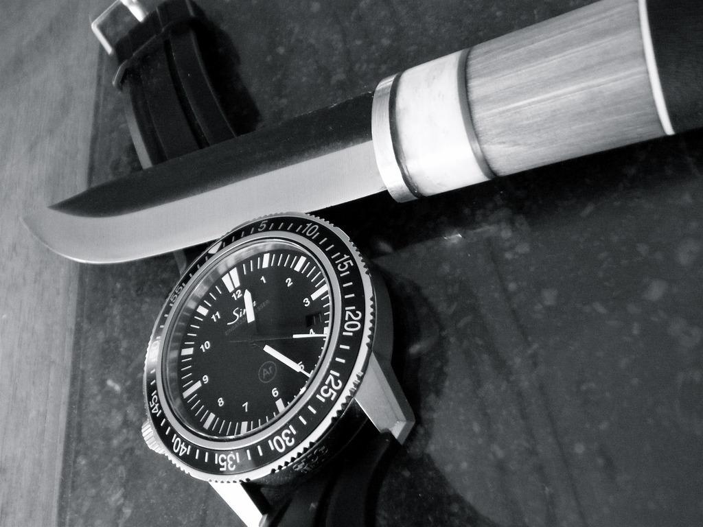 La montre du vendredi, le TGIF watch! - Page 2 DSCF5227_zpsh4tzj9mo