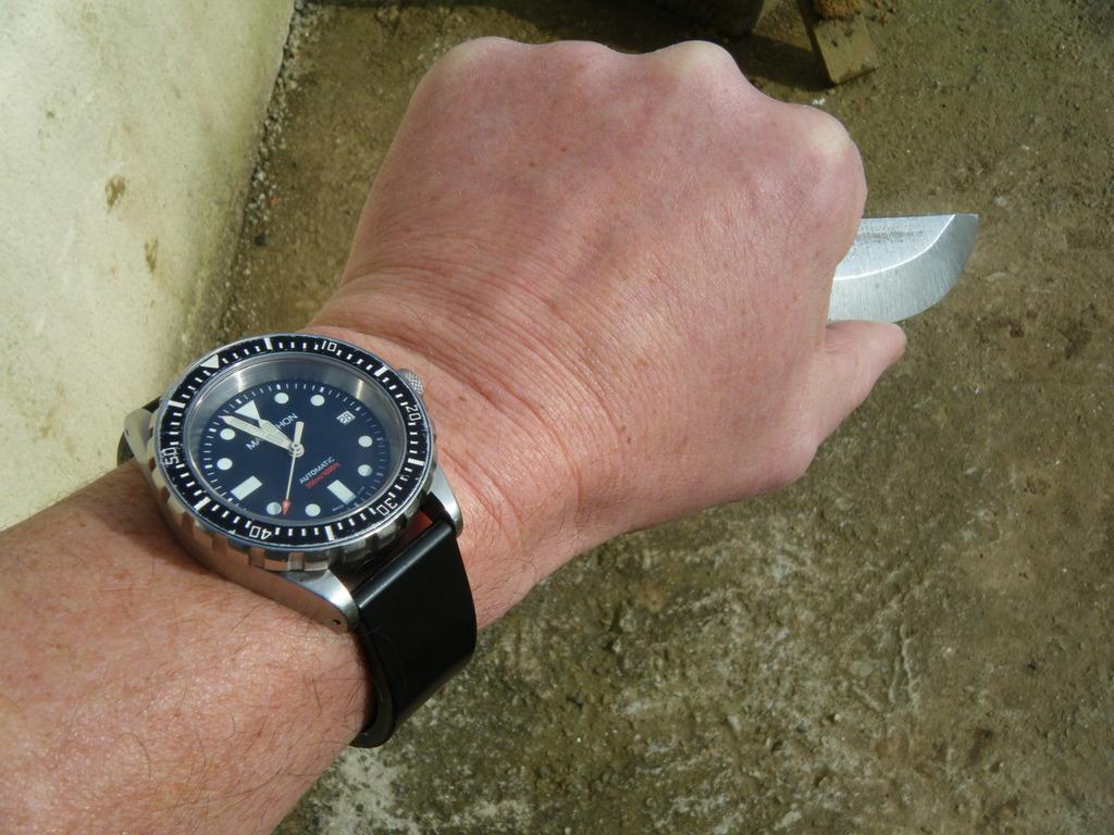 Votre montre du jour - Page 32 DSCF6044_zpslxs5bbou