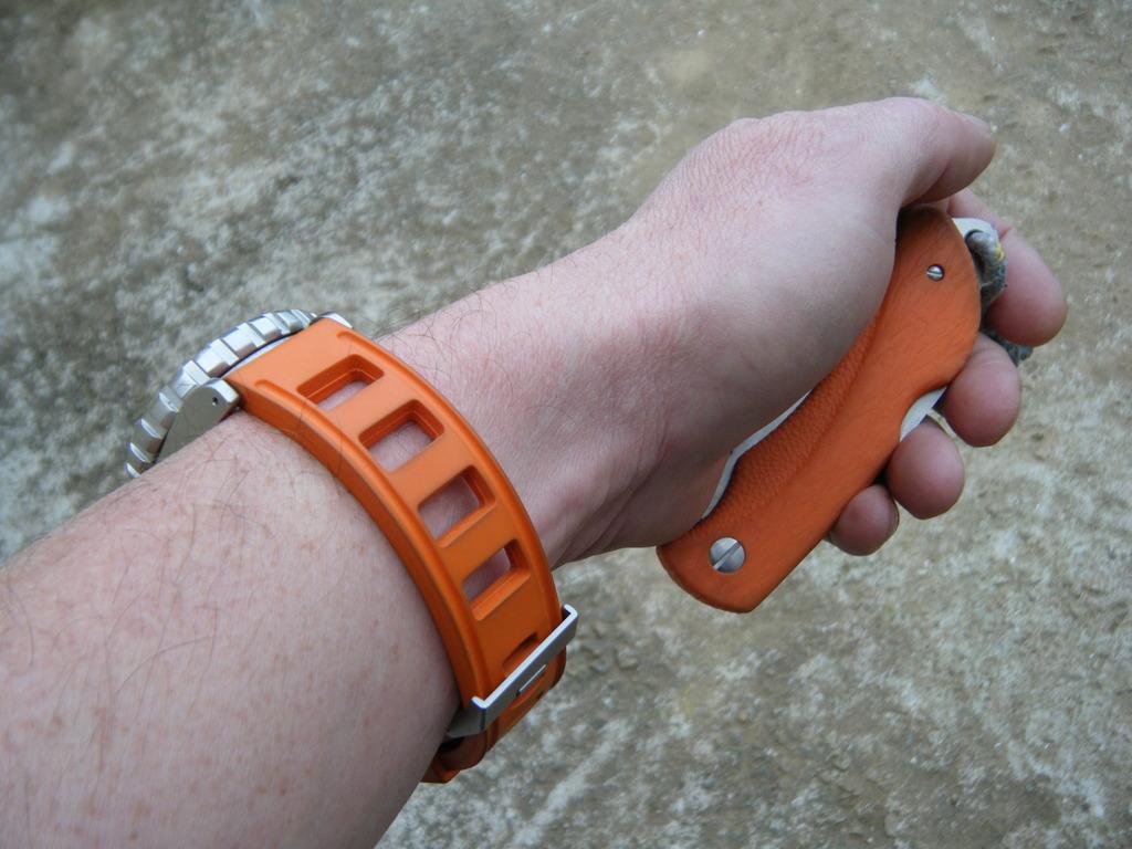 Votre montre du jour - Page 2 DSCF6048_zpsrmnsfqki