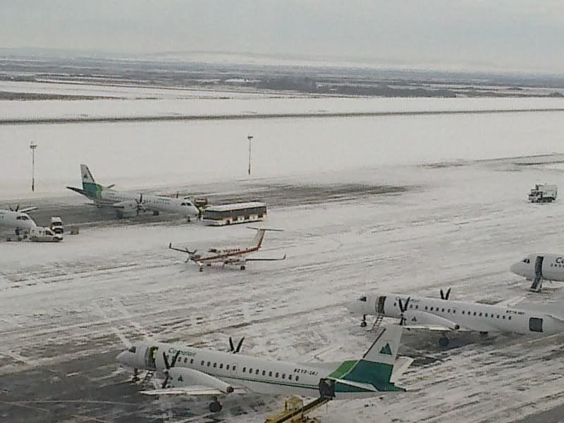 Aeroportul Timisoara (Traian Vuia) Decembrie 2010  - Pagina 2 20122010165-1