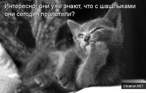 Евгений Литвинкович: Общение поклонников - Том VI - Страница 4 A6155230c81988eee1ea8d5ad3079945