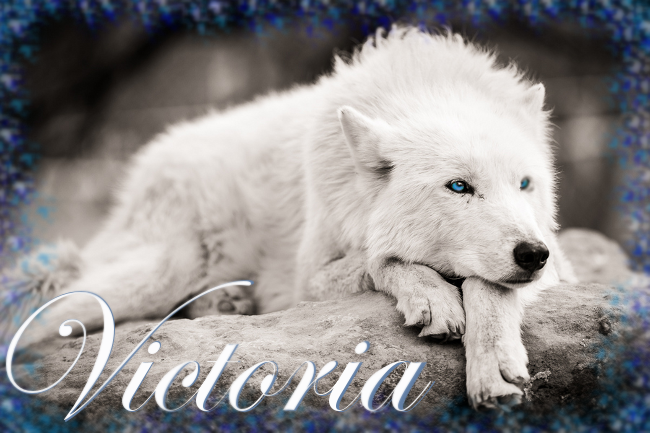 Victoria - Joining Profile VictoriaRef_zps58343940