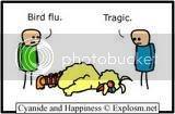 the bird flu Ththbigbird1