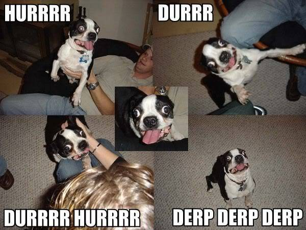 derp Pictures, Images and Photos