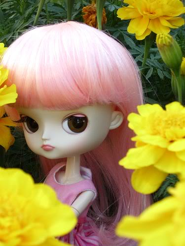 Magical pink chan DalFlowers003
