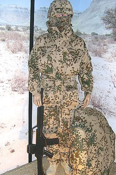DSO and Private Purchase Flecktarn 3-F-TD