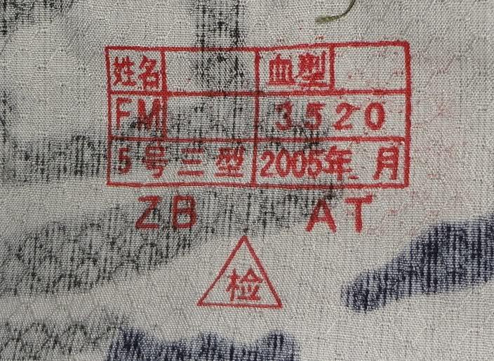 Chinese Digital Uniform 69088d7c