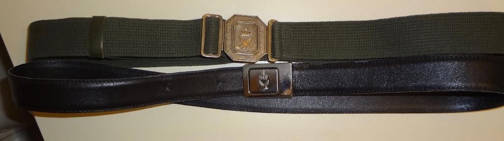 Airforce dress uniform collection DSC08954_zpsh5ve90qr