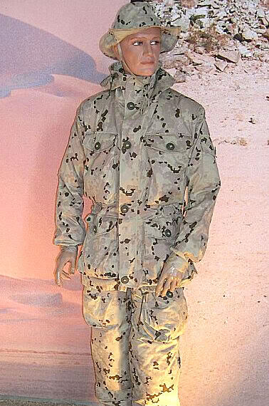 DSO and Private Purchase Flecktarn W-TD