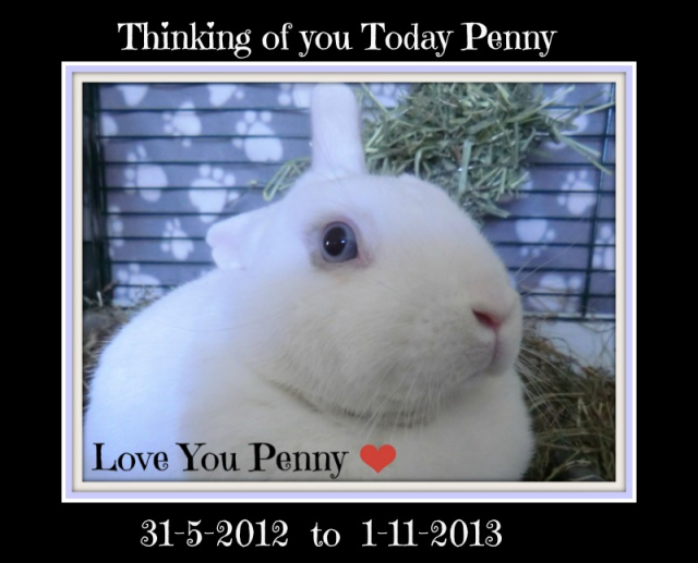 Thinking of you today Penny :-( Pennymem2014
