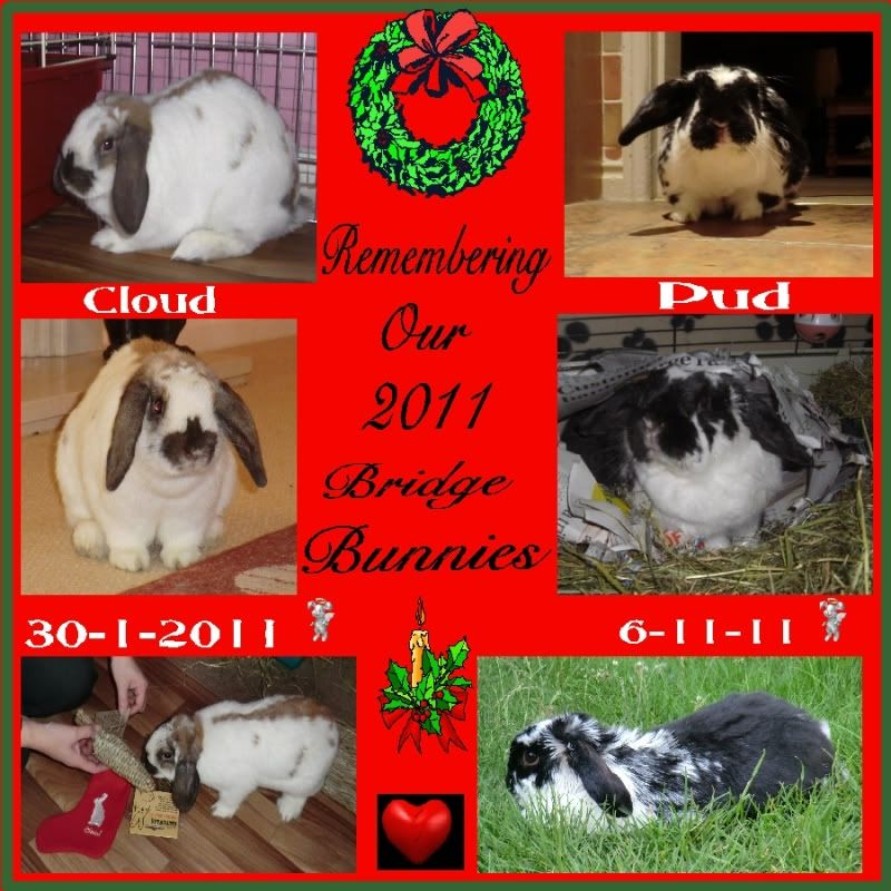 Remembering You both at Christmas as Always. 2010BridgeBunnies