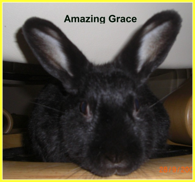 Amazing Grace 14-2-05  to  17-4-12 28-9-092-1