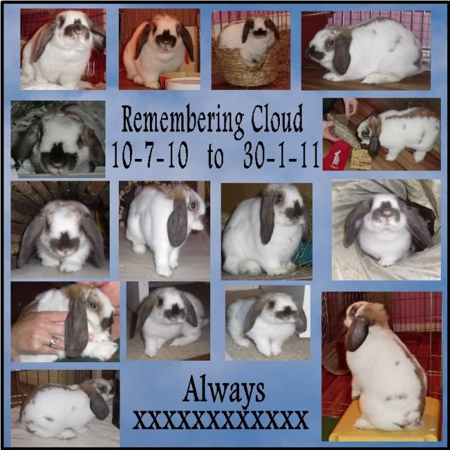 Remembering Cloud  10-7-10  to  30-1-11 RememberingCloud