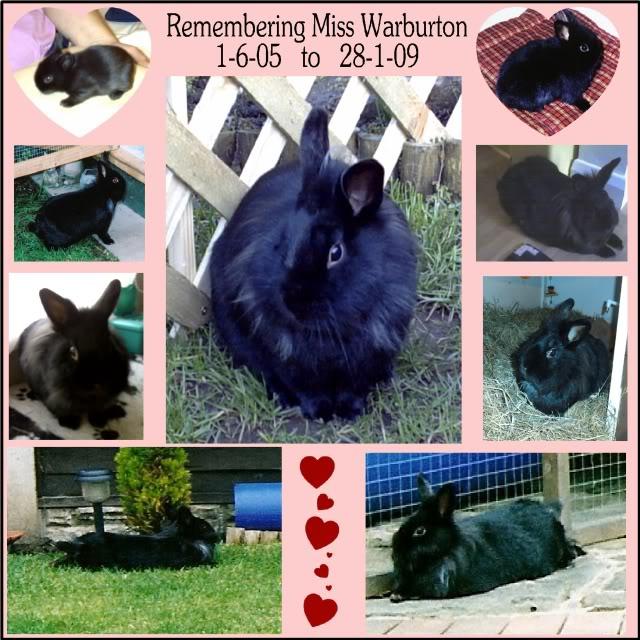 Remembering Miss Warburton 1-6-05  to  28-1-09 RememberingMissWarburton-1