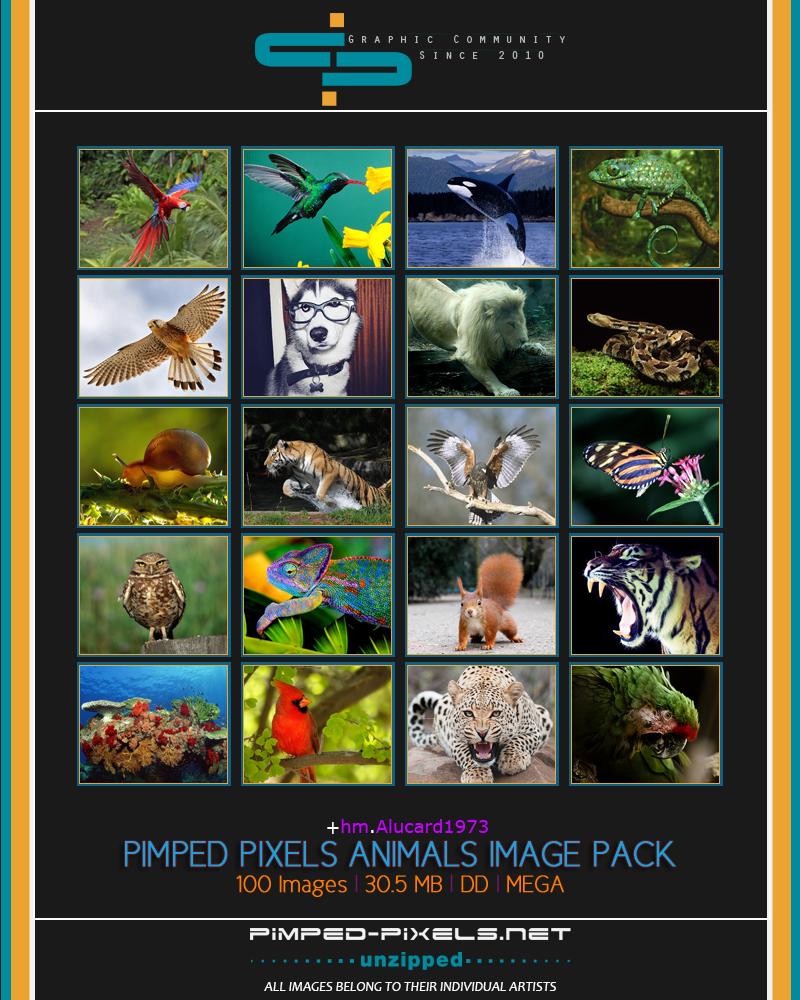 +hm.Alucard1973 Pimped Pixels Animals Image Pack 1%20Preview_zpsja7hn03y