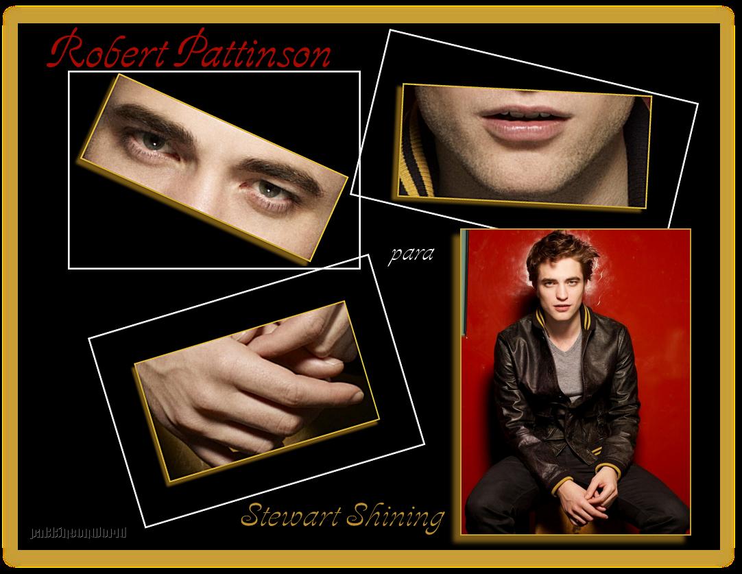 ALBUM-Robert para Stewart Shinning-2009 RobertparaSS