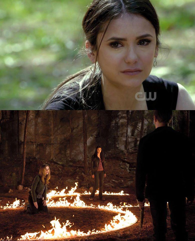 The Vampire Diaries /ვამპირის დღიურები #1 - Page 64 675256e59ac5f7c93de9def5a18be554