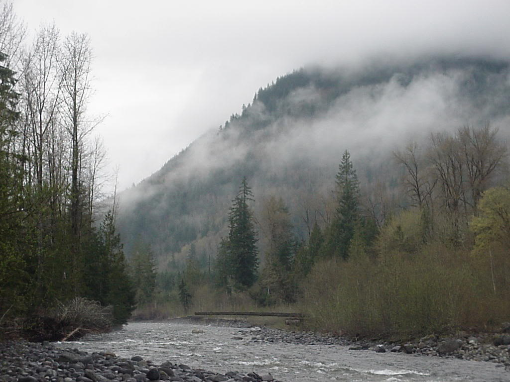 d2c9.jpg Mountain in Fog image by lector13