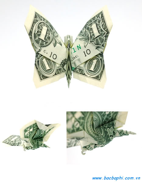 Nghệ thuật gấp tiền giấy! và cách gấp :X  003