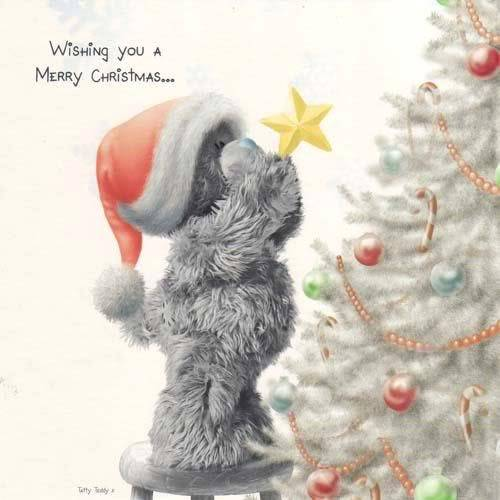 Merry Christmas everyone!!!  Merryxmas