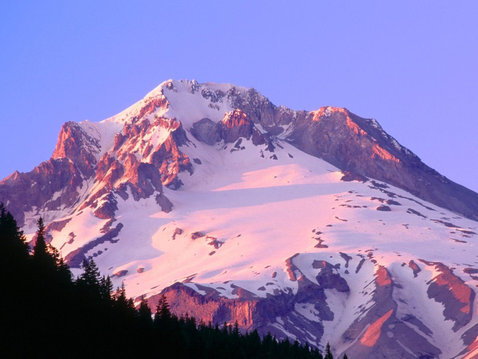 அழகு மலைகளின் காட்சிகள் சில.....02 - Page 22 AlpenglowontheSlopesofMountHoodOreg
